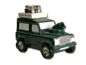 Teafender Rover One Cup Teapot