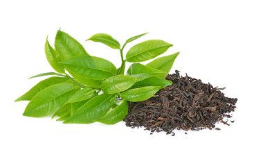 2020-02-29 Workshop - Tea Tasting - Black Tee